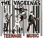 Vageenas: Teenage Music LP